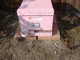 Hello-Kitty-hive-400x300